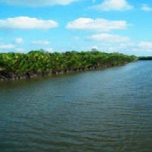 โครงการยุวฑูตคุณภาพแม่น้ำประแสแห่งเทศบาลตำบลเมืองแกลง