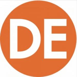 Developmental Evaluation (DE)